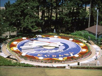 世界一の花時計『松原公園』