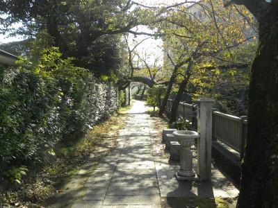 川沿いのお散歩コースです!