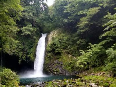 天城 浄蓮の滝