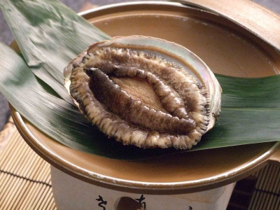 別注料理 鮑の陶板焼き
