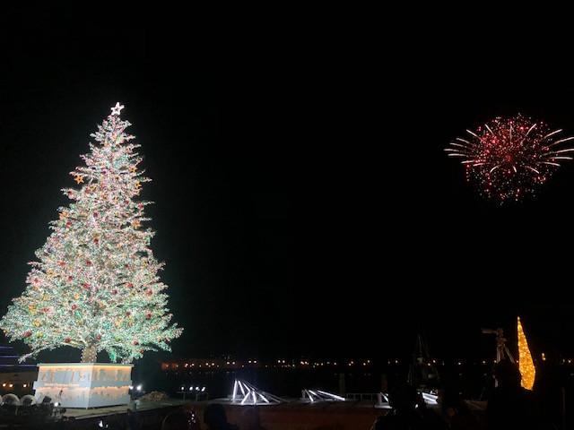 クリスマスツリーと花火の競演