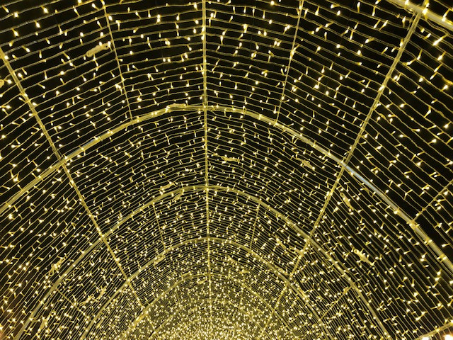 光のトンネル(内部①)