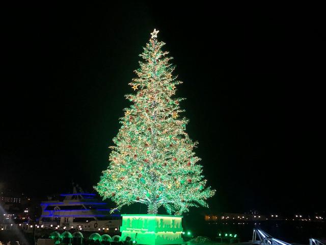 2020クリスマスファンタジーの「もみの木」