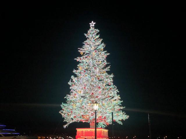 装飾が色鮮やかなクリスマスツリー