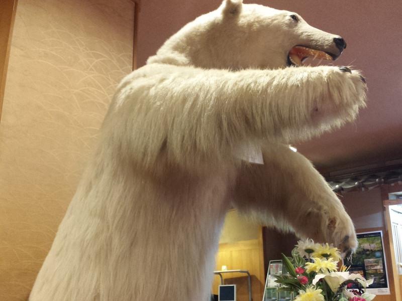 ロビーでは白熊のはく製がお出迎えいたします☆